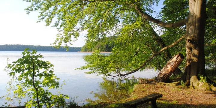 Naturpark-Stechlin-Ruppiner-Land_DSC_0009